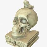 Low polygon 3d skull
