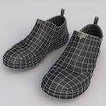 Shoe_06